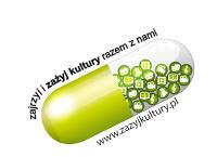 http://zazyjkultury.pl/