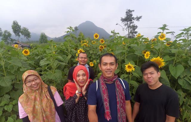 Bunga Bunga Desa