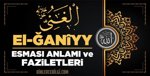 Allah'ın 99 ism-i şerifi Esmaül Hüsnasından olan Ya Ganiyy ne demek, anlamı, zikri, fazileti nedir? Ya Ganiyy Ebced değeri, zikir adedi ve günü nedir?