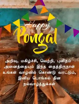 Pongal greetings in tamil Pot | Happy pongal wishes,  Happy pongal, Pongal wishes in tamil