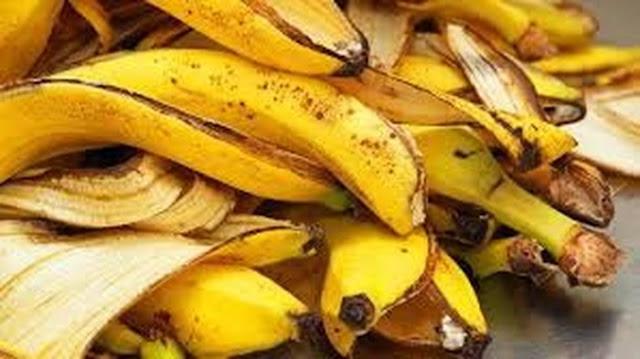 Tak hanya itu, kulit pisang juga mengandung kalium yang tinggi yang membantu menyeimbangkan cairan dan elekrolit dalam tubuh. Tubuh Anda pun akan terlindungi dari penyakit jantung.