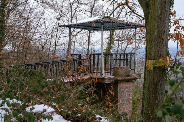 Blättersbergweg Rhodt  Winterwandern Südliche Weinstraße  Rietburg - Villa Ludwigshöhe - Edenkoben 06