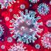 जीएमसी शहडोल से देर रात्रि प्राप्त रिपोर्ट में 15 व्यक्तियों में कोरोना संक्रमण की पुष्टि पुष्पराजगढ़ के कोरोना पॉजिटिव मरीजों के प्राथमिक सम्पर्क में थे सभी संक्रमित संक्रमितों में 7 पुरुष, 8 महिलाएँ, सभी का स्वास्थ्य स्थिर ऐक्टिव कोरोना पॉजिटिव मरीजों की संख्या हुई 35 कछराटोला, घोघरी एवं ग्राम लीला में एसडीएम ने बनाया कंटेनमेंट जोन