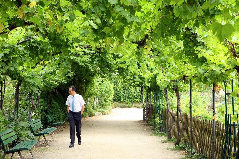 Paris chez sharon for Jardin catherine laboure