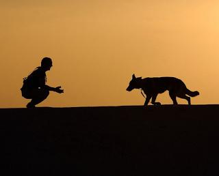 Mies odottaa koiraa