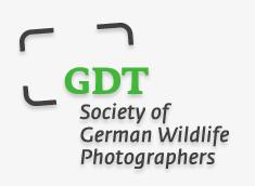 https://www.gdtfoto.de/seiten/fritz-steiniger-prize-2015.html