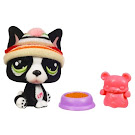 Littlest Pet Shop Collectible Pets French Bulldog (#978) Pet