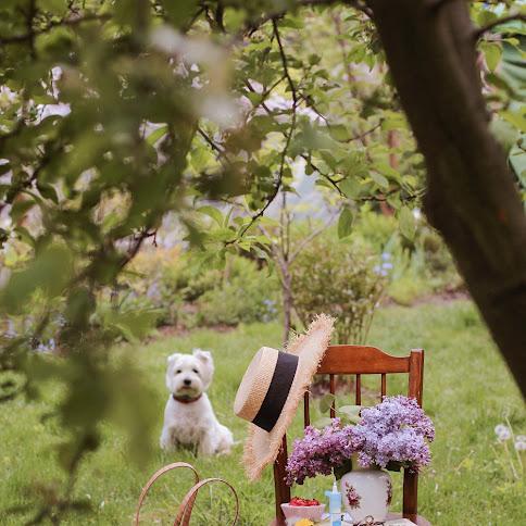 Maj w ogrodzie - praca w ogródku i alergia. Przepis na majowy miodek!