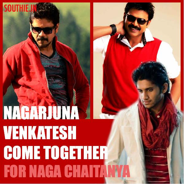 Nagarjuna and Venkatesh together for Naga Chaitanya? - Southie