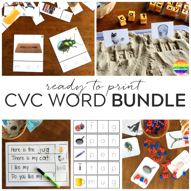 CVC Word Cards | you clever monkey