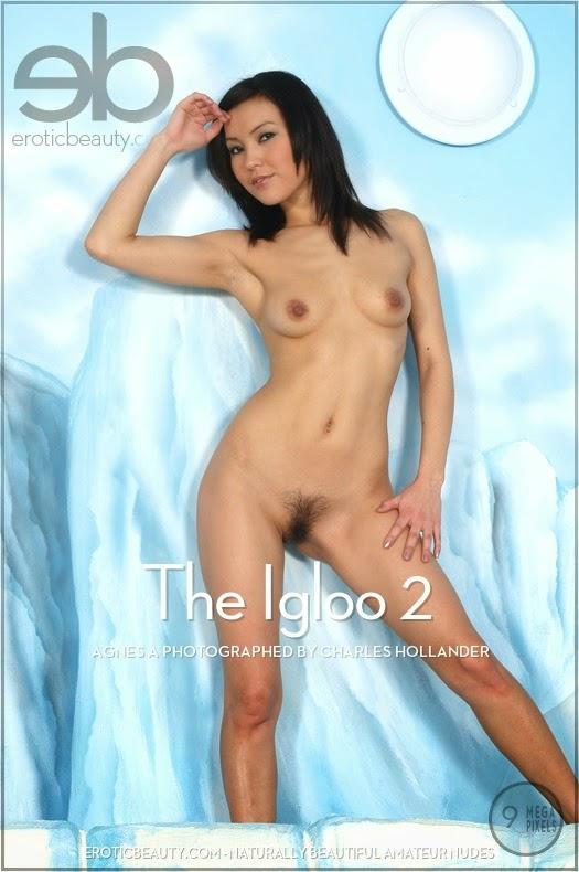EroticBeauty 2014-12-26 Agnes A - The Igloo 2 12070