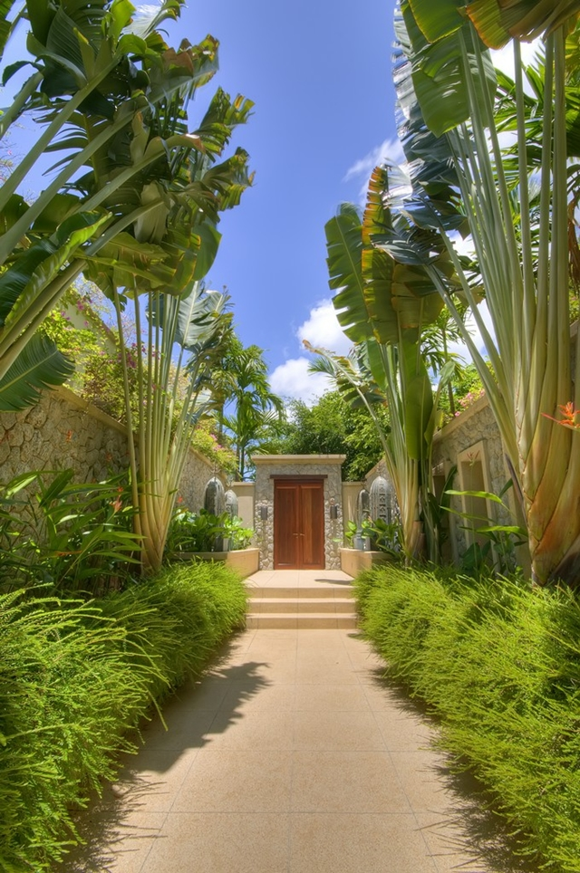 Entrance to the property through tall vegetation
