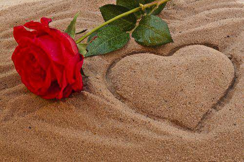 love u with heart rose image