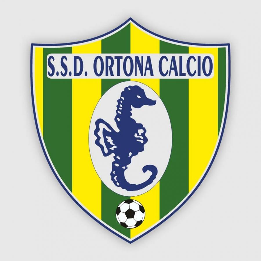 L'Ortona calcio esonera il coach Tommaso Di Biccari