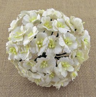 https://www.scrapek.pl/pl/p/Kwiat-jabloni-White-20-25mm-10-sztuk/9490