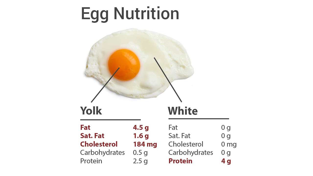 Are-broiler-eggs-good-for-your-health-or-not, egg-nutrition-facts