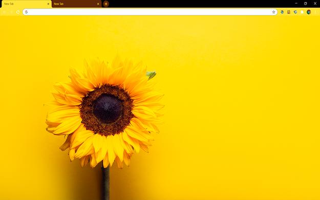 Sunflower Yellow Google Chrome Theme