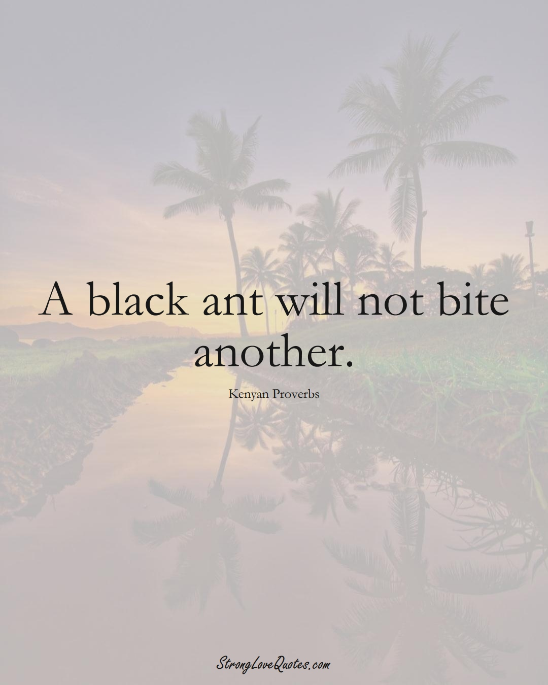 A black ant will not bite another. (Kenyan Sayings);  #AfricanSayings