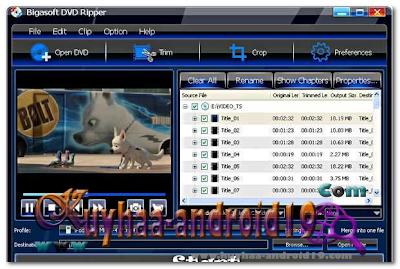 BIGASOFT DVD RIPPER 3.1.8.4694 FINAL