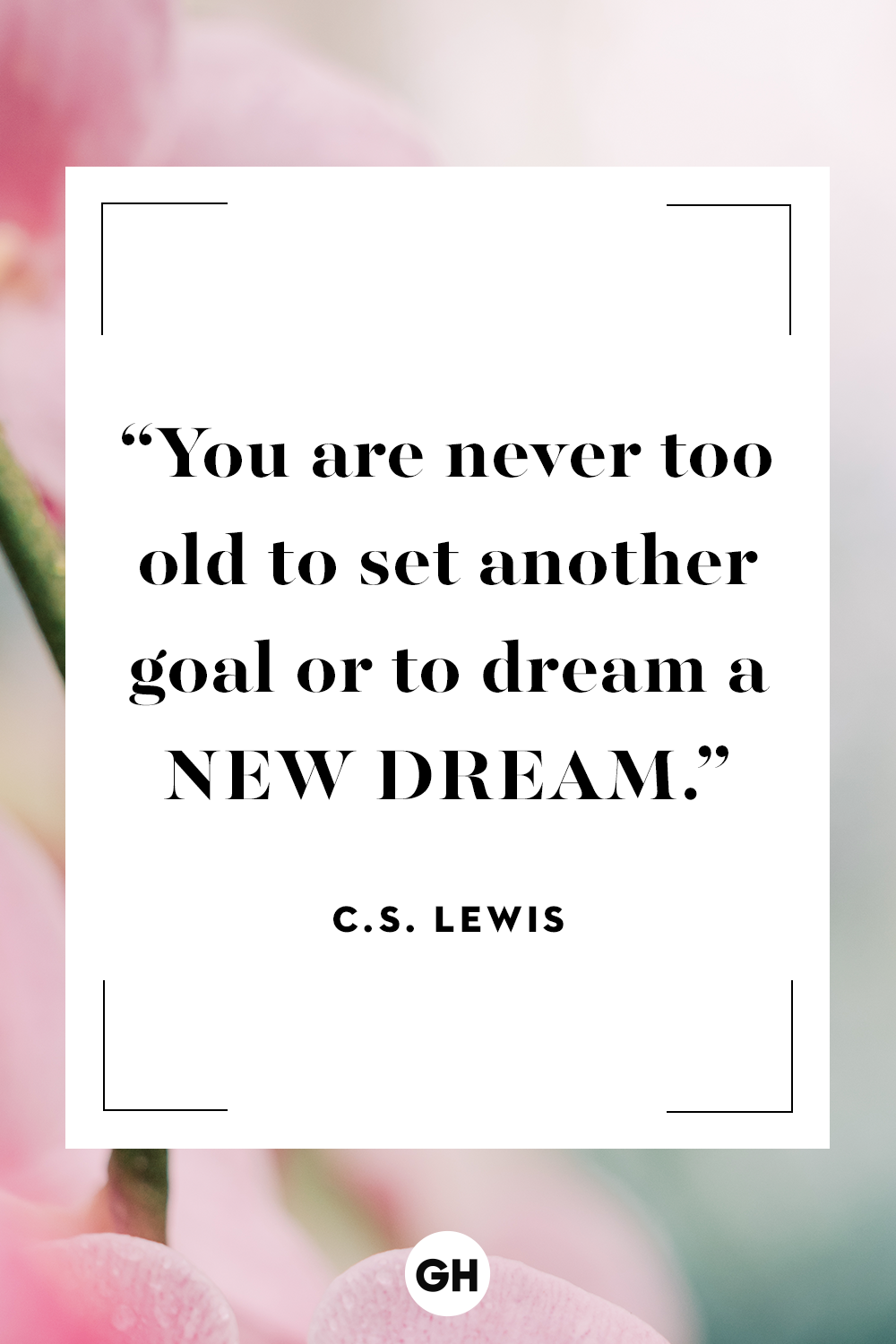 Inspirational Quotes, You Are Never Too Old To Set Another Goal