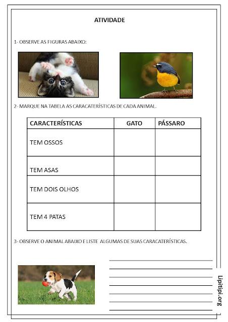 Atividade Características dos Animais Primeiro Ciclo