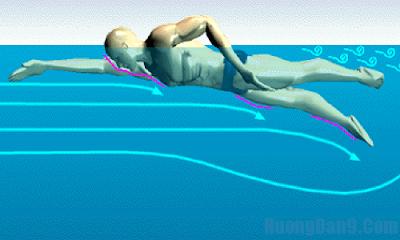 Học bơi sải đơn giản