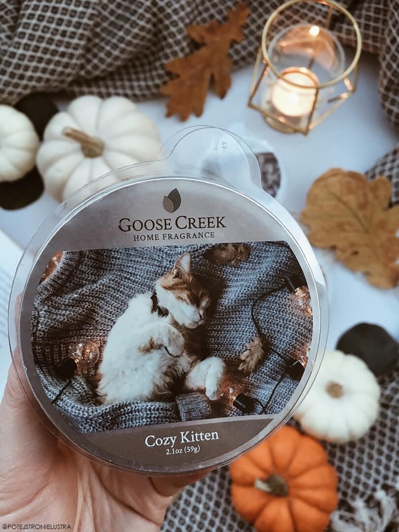 goose creek cozy kitten recenzja na blogu i opinia o zapachu