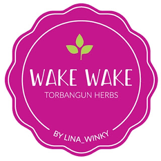 wake wake booster asi