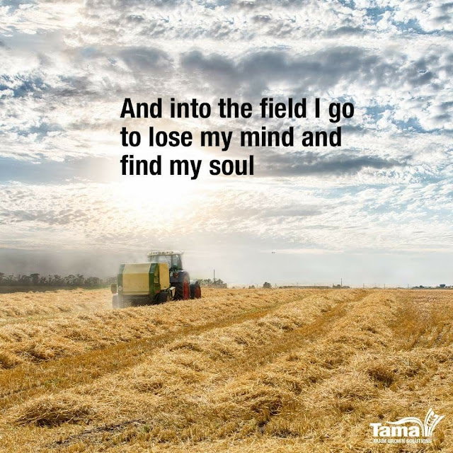 And Into The Field I Go To Lose My Mind