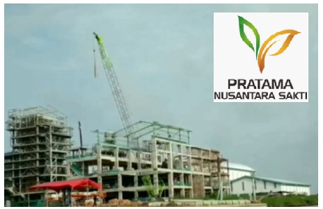 Lowongan Kerja Perkebunan PT Pratama Nusantara Sakti (Djarum Group) Mei 2020