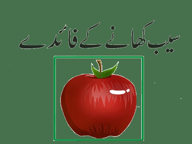 سیب کے فائدے اردو میں