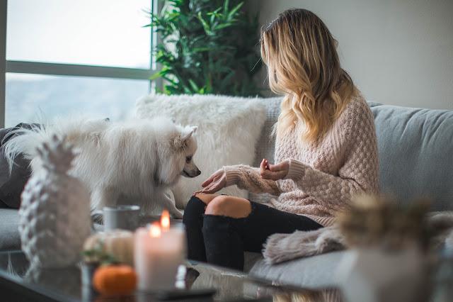 dicas do que fazer em casa quarentena isolamento (2)