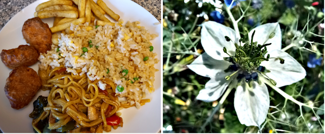 Chinese fakeaway and a new flower in my garden