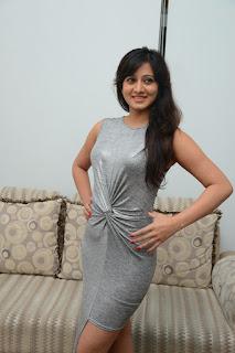 Actress Harshika Poonacha Stills in Silver Dress  0010