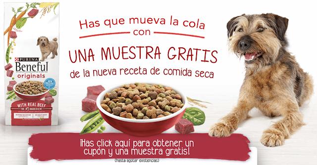 Festejando a lolita probando nuevas recetas con beneful mi cocina r pida - Comida para cachorros de un mes ...