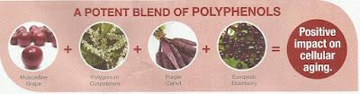 Manfaat Polifenol Untuk Sel Yang Sihat