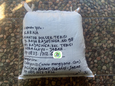 Benih padi yang dibeli   KARNA Indramayu, Jabar.  (Setelah packing karung ).