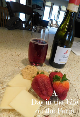 Fruit and cheese with wine