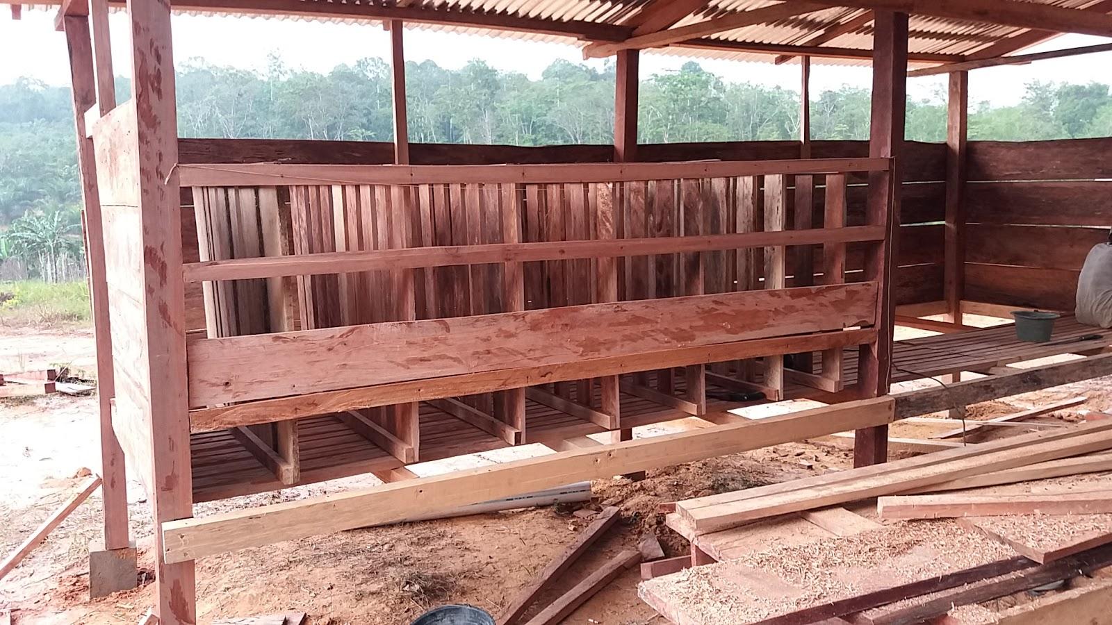 Peternakan Sapi, Kambing dan Domba di Jambi: Proses ...