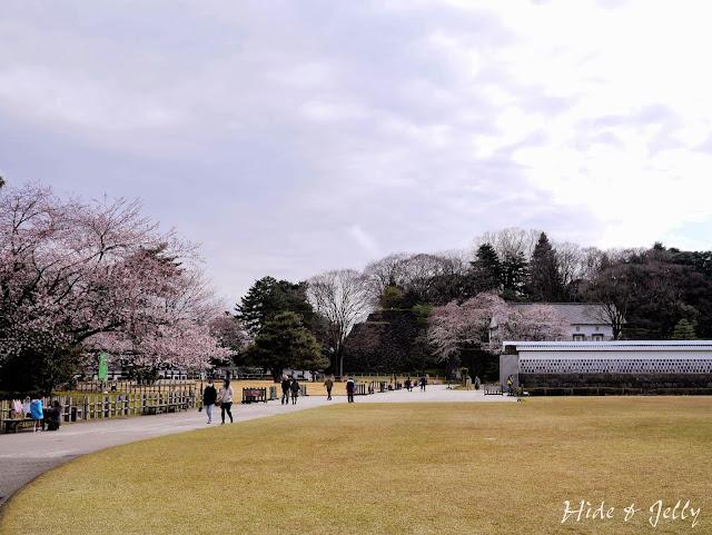 HIDE & JELLY: 北陸悠閒賞櫻散策行 Day4 金澤--金澤城