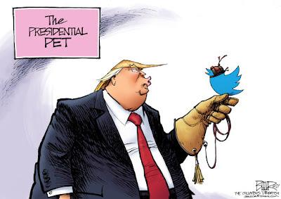 The president's new pet
