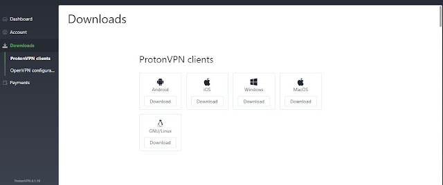 ProtonVPN Download within dashboard