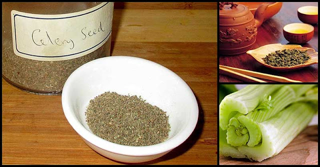 The Amazing Benefits Of Celery Seed Tea To Our Overall Health