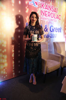 Tamannaah Bhatia at Launch of Kansai Nerolac new products Pics 009.jpg