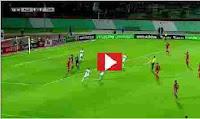 مشاهدة مبارة تونس والجزائر كأس العرب بث مباشر يلا شوت