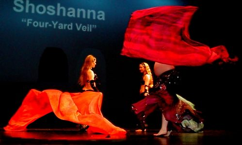 Bellydance Dvd Review Fabulous Four Yard Veils With