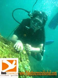 Diving in Bali - Watersport Tanjung Benoa