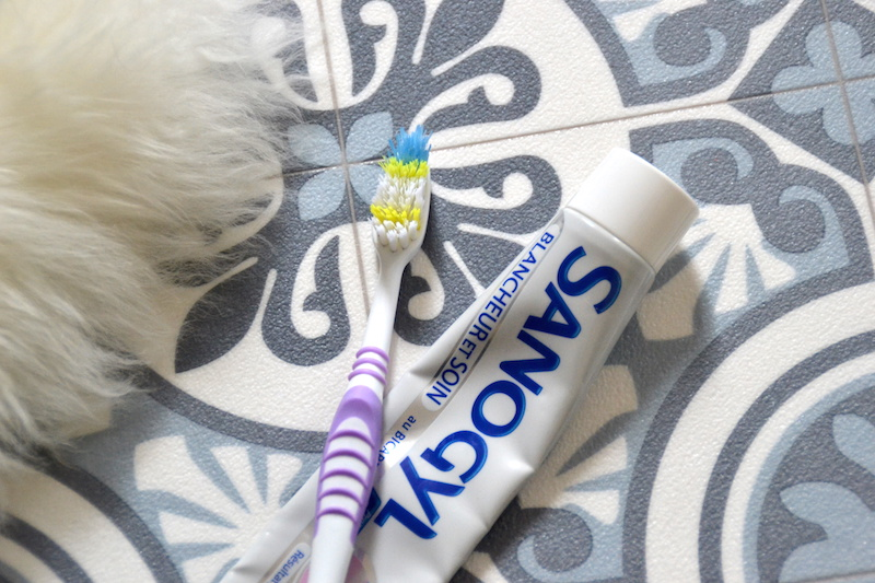 Dentifrice et brosse à dent Sanogyl blancheur et soin