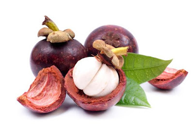 Berikut Ini Beberapa Khasiat dan Manfaat Kulit Manggis