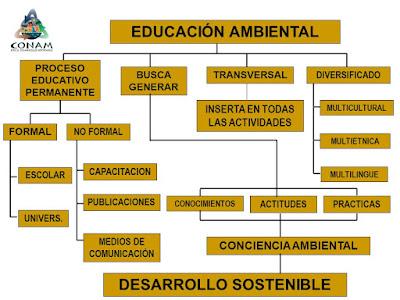 Evolución de definiciones de Educación Ambiental